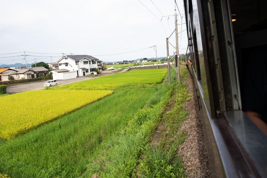 s-s-P9092018.jpg