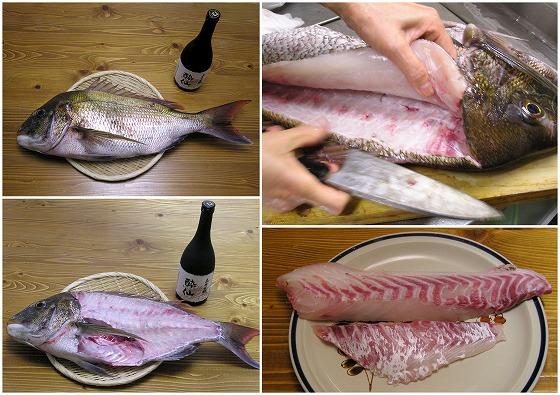 070505酔仙と真鯛