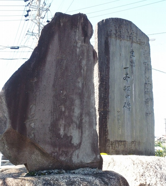 180928富田の一本松-2