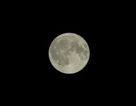 お月見満月 2018-08-26 007