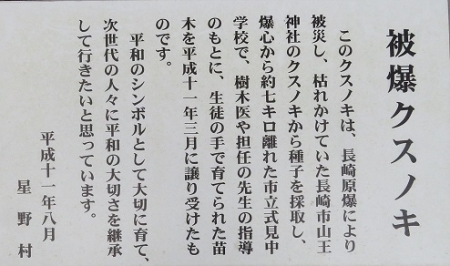 星野村 はんや舞 2018-09-16 103