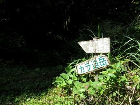 星野村 はんや舞 2018-09-16 237