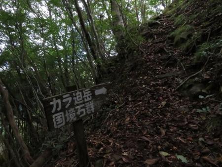 星野村 はんや舞 2018-09-16 269