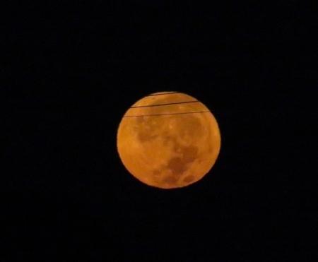 満月の次の朝 2018-09-25 011