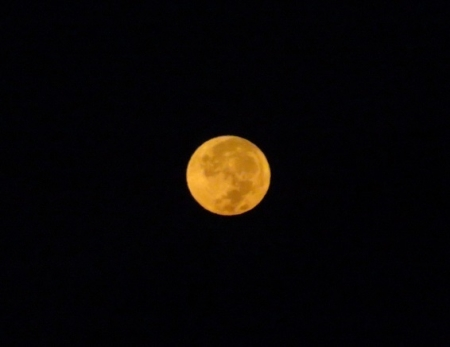 満月の次の朝 2018-09-25 005