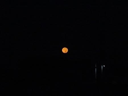満月の次の朝 2018-09-25 007