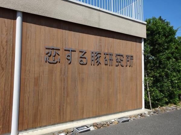 100825恋豚研究所 (9)