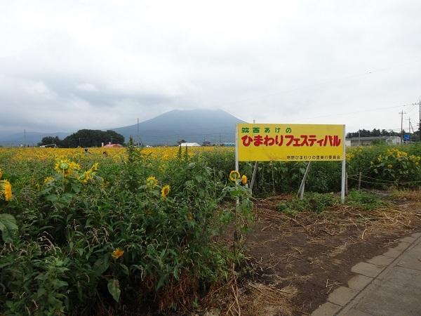 180901明野ひまわり1 (11)