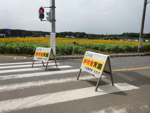 180901明野ひまわり1 (17)