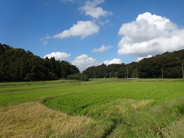 181006秋元牧場 (6)