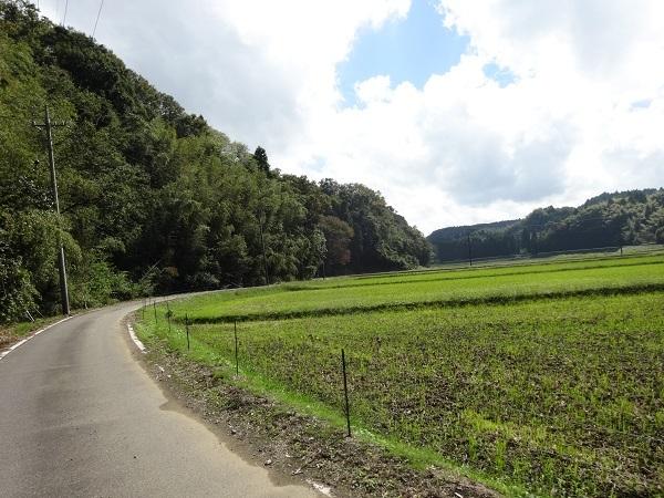 181006秋元牧場 (8)