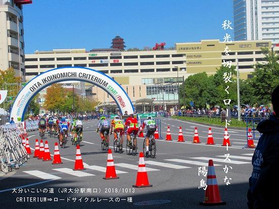 ロードサイクルレース