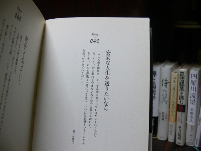 P1020189(2).jpg