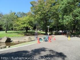 K12蚕糸の森公園01