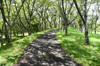 七ヶ宿公園 遊歩道