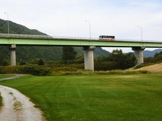 ラベンダー#9国道