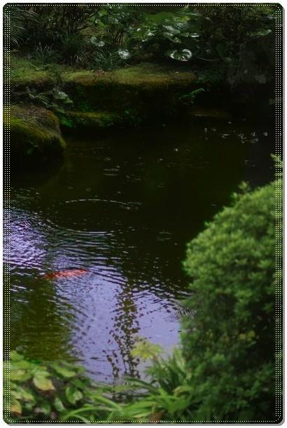京都 (6)sDot07