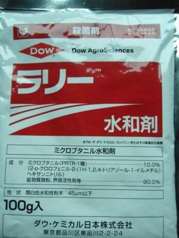 DSCF7028_縮小