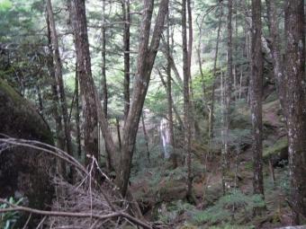 雨の後にだけ現れる滝180825