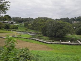 厳島湿生公園180911