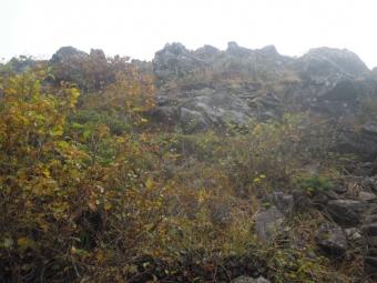 秋の色づきー2-180916