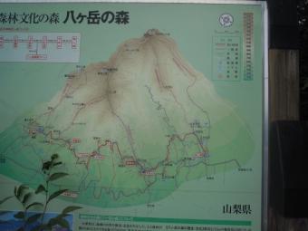 八ヶ岳の森180916