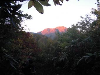 朝焼けの越後駒ケ岳14281005
