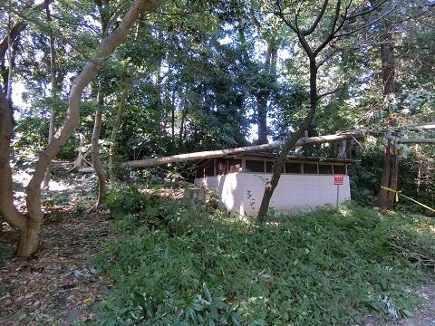 台風被害井の頭公園12