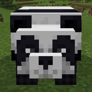 minecraft_be_1_8-17.jpg