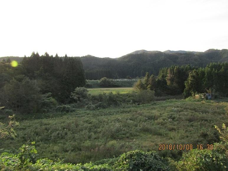 真瀬川川べり2