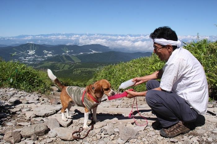 2012根子岳登山道にて