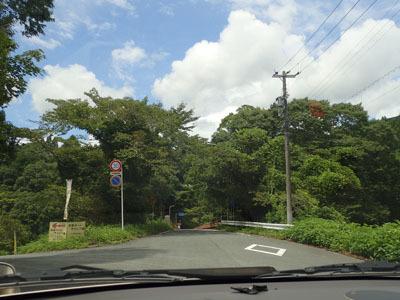 natuasobi2.jpg