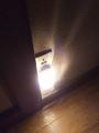 LEDセンサーライト各種導入(廊下)3
