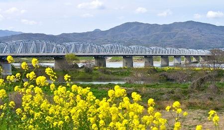 阿波中央橋07