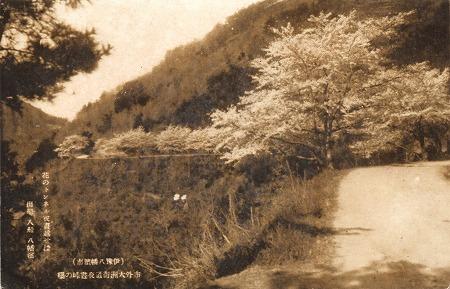 八幡浜道路28