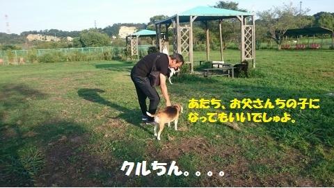 DSC_0393_convert_20180821230511.jpg