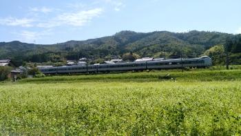 20180919白そば畑と電車