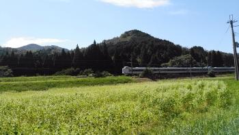 20180919白そば畑と電車2