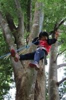 木登り遊び8