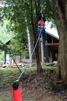 木登り遊び5
