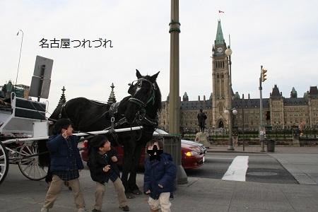 カナダの三兄弟2