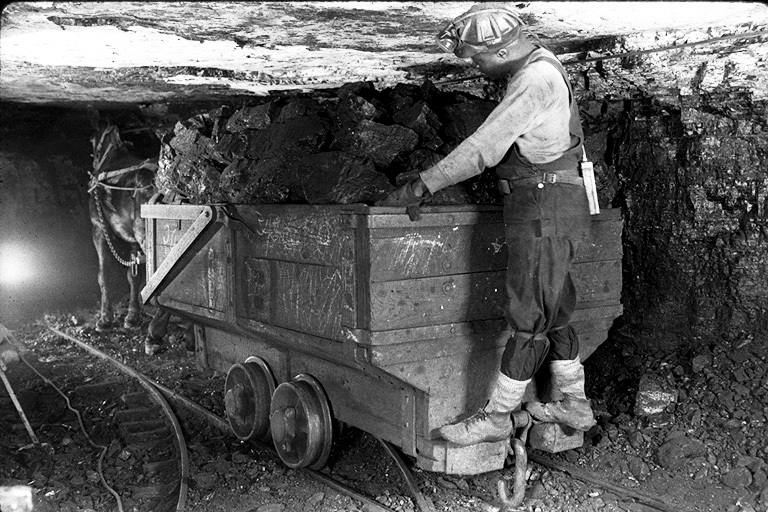 A_mule_pulls_a_load_of_coal.jpg