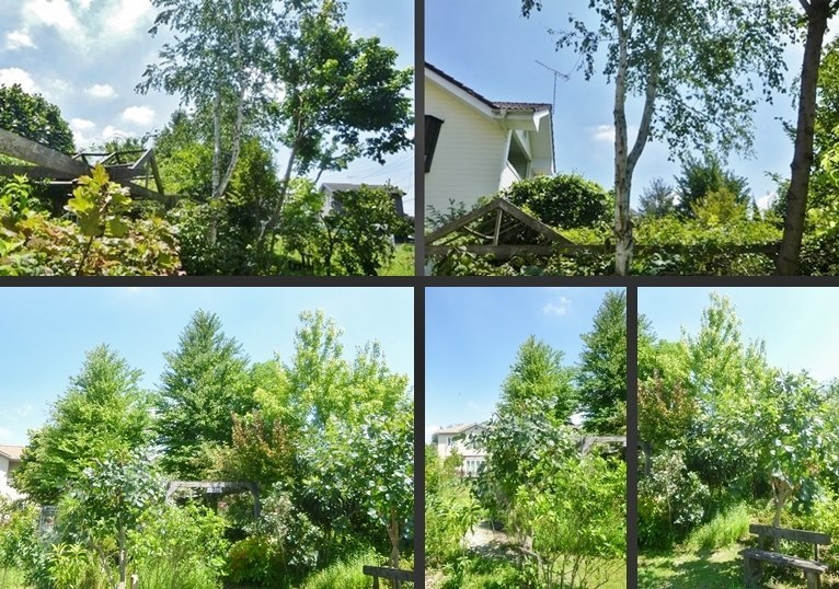 P2340970-horz-vert.jpg