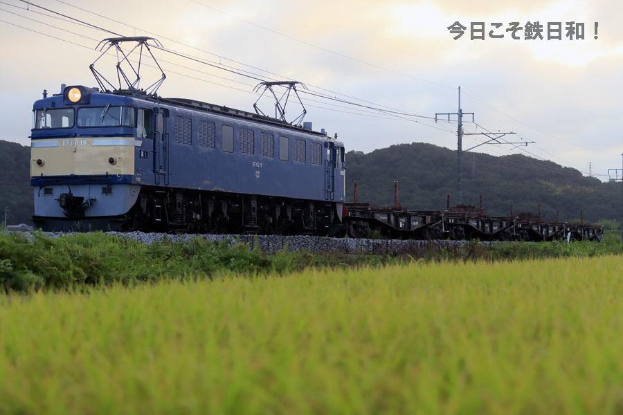 _MG_7866.jpg
