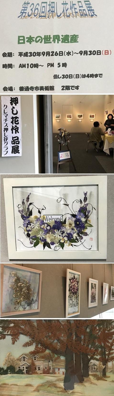 20180927押し花展 11