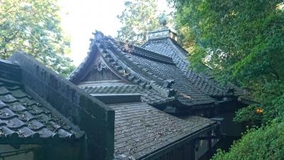 本殿の屋根