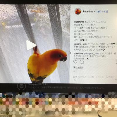 IMG_0110_convert_20180820173217.jpg