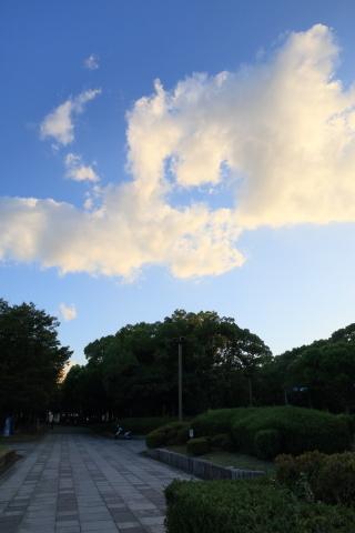 20180826higashikouen.jpg