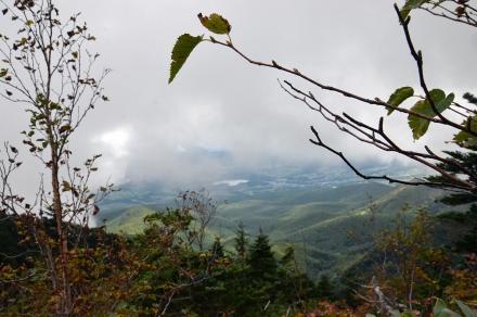 登山道からの風景