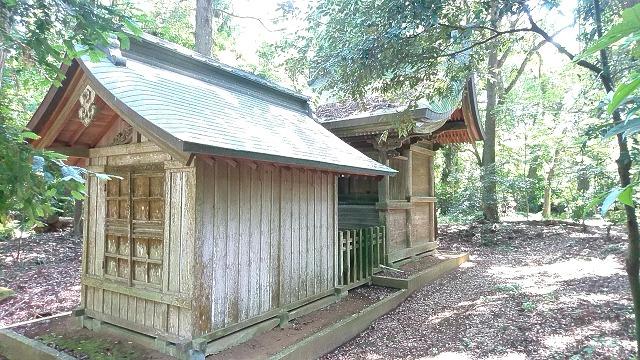 坂戸神社 (3)